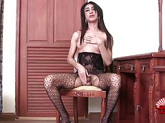 Sexy Boy is a hot tall transgirl with a sexy body, big boobs, a juicy ass and a sexy hard cock! Watch this horny transgirl jacking her hard cock!